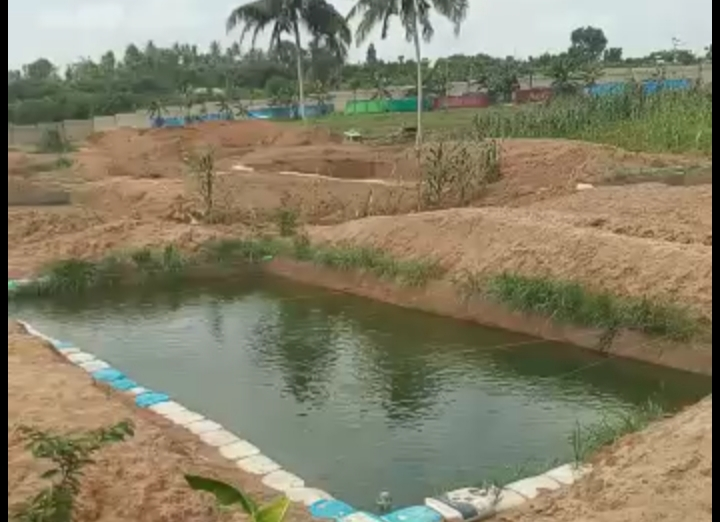 A large operational fish farm at Agbara, Ogun state for sale