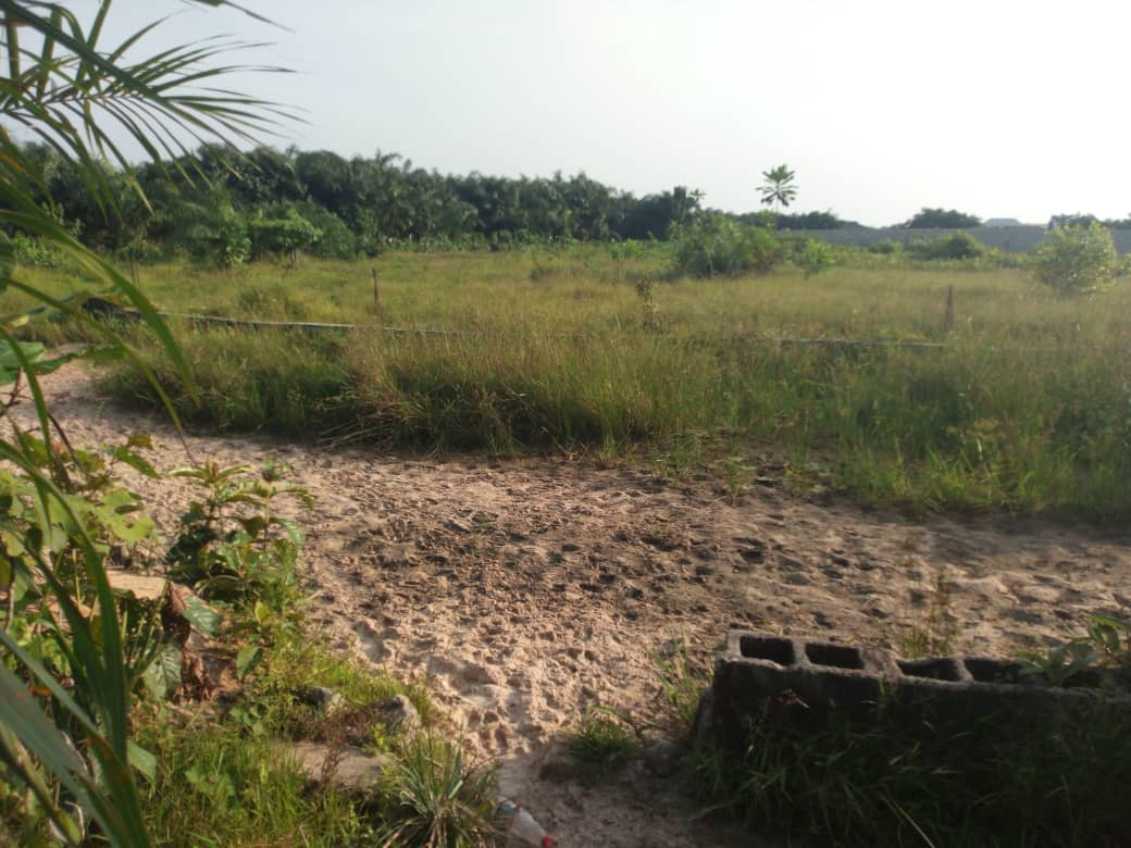 1000sqm piece of land for sale at Oniru Victoria Island