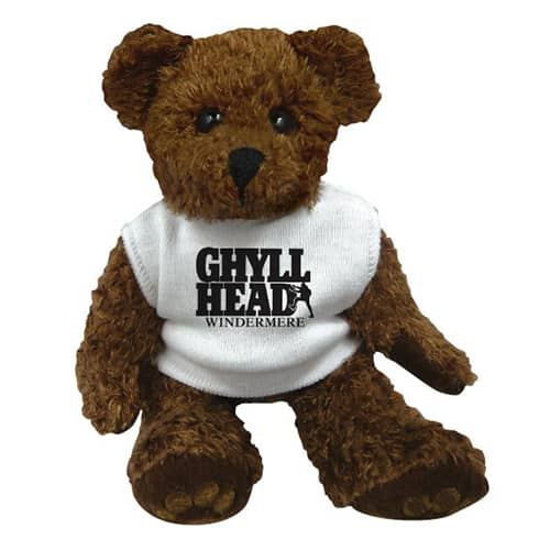 Promotional Charlie Teddy Bears for Kids Campaigns