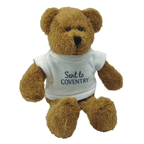 Personalised 9 Inch Scraggy Teddy Bears