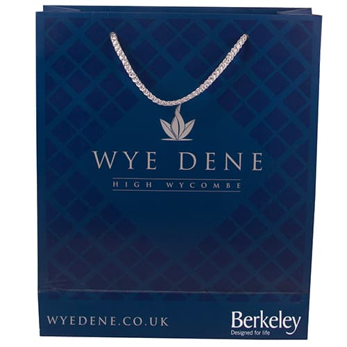 Promotional Medium Rope Handle Paper Bags printed with company design
