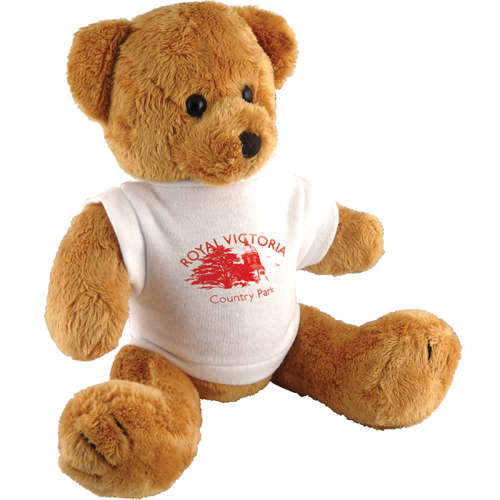 Promotional Robbie Teddy Bears for Childrens Marketing