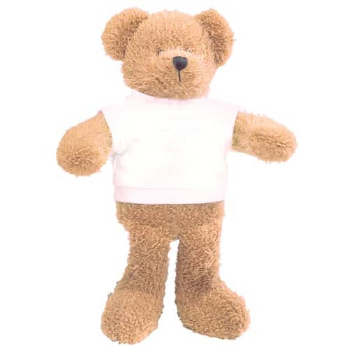 Personalised 9 Inch Scraggy Teddy Bears