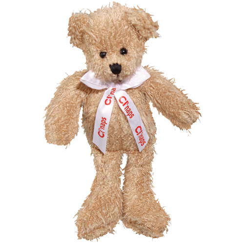 Promotional Scraggy Teddy Bears for Marketing Gifts