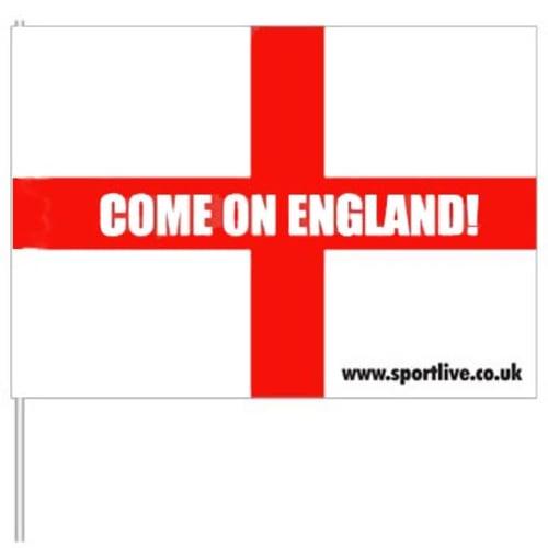 A4 Paper Flag