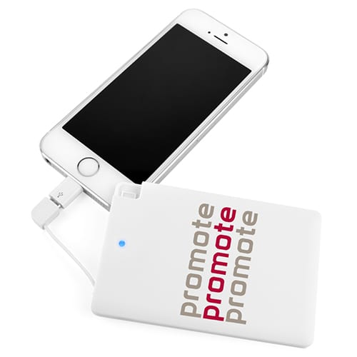 48 Hour Express Card Phone Charger