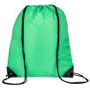 Everyday Drawstring Bags in Light Green