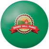 Full Colour Stress Balls in Green