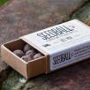 Matchbox Seeds