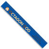 30cm Recycled Plastic Rulers in Blue