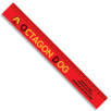 30cm Recycled Plastic Rulers in Red