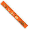 30cm Recycled Plastic Rulers in Orange