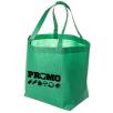 Kansas Non Woven Shopper Bags in Green