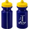 500ml Viz Sports Bottles in Blue