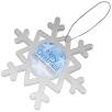 Magnetic Snowflakes in Transparent Clear