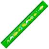Plastic 30cm Ruler in Green