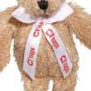 Scraggy Teddy Bears