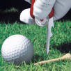 Victorinox Golf Tools
