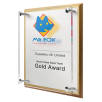 Personalised Award for Business Merchandise