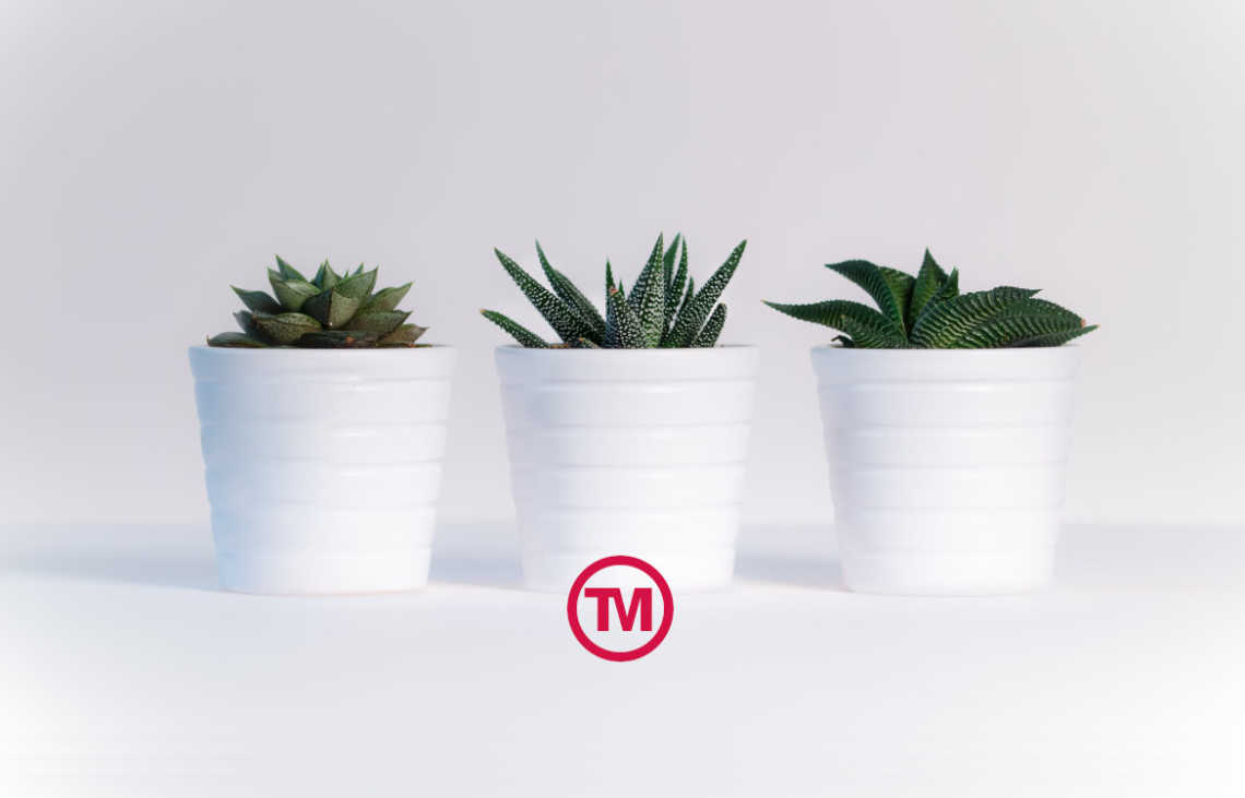Top 5: Eco-Friendly Promotional Products That Can Make A Big Difference