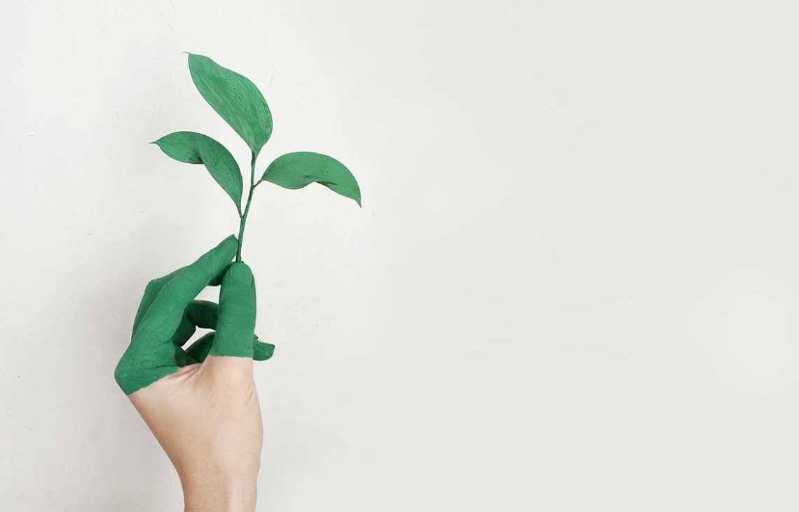 The Coolest New Eco Friendly Promotional Products For Your UK Business
