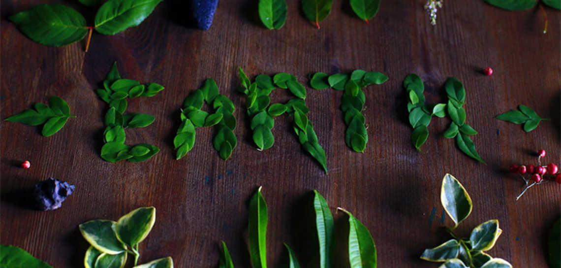Go Green: Why Being Environmentally Friendly Can Be Great for Your Brand