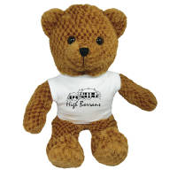 Promotional 15 Inch Jango Bear with T Shirt with a company logo printed onto the front