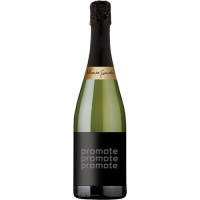 Promotional 75cl Cava Brut Sparkling Wine for Corporate Events