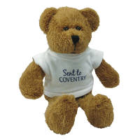 Personalised 9 Inch Scraggy Teddy Bears with a branded t-shirt from Total Merchandise