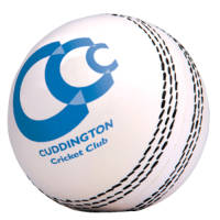 Promotional Stress Cricket Balls for printing with your company designs