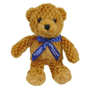Branded teddy bears for company giveaways