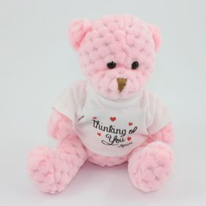 15cm Waffle Bears with T Shirts in Candyfloss