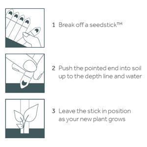 5 Stick Seed Packs