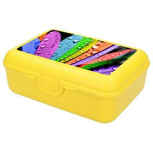 Promotional Polypropylene Lunch Boxes for Business Merchandise