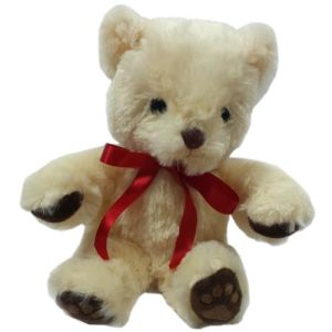 Branded Teddy Bears for childrens giveaways
