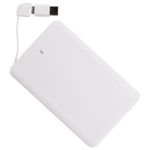 Corporate Branded Phone Chargers with Type C Adaptors