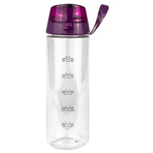 Stay Hydrated Water Bottles in Clear/Purple