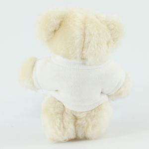 Corporate Branded Teddy Bears for Business & Charities