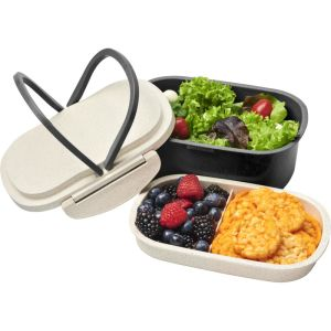 Corporate Branded Eco-Friendly Lunch Boxes
