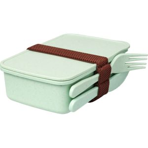 Promotional Lunchbox for Printed Business Designs