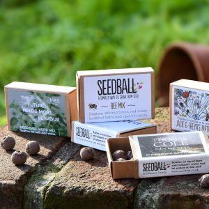 Personalised Matchbox Seeds