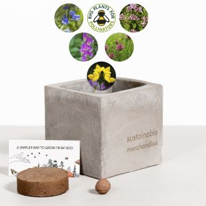 Bee Mix Clay Promotional Plant Pots