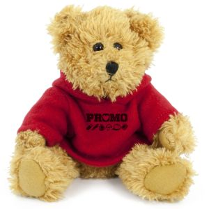 20cm Sparkie Bear with Red Hoody