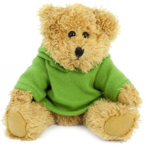 20cm Sparkie Bear with Green Hoody