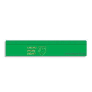 Branded 15cm ruler for students and business