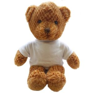 Promotional 15 Inch Jango Bear with T Shirt business gifts