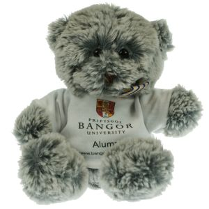 15cm Premium Mulberry Teddy Bears