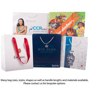 Branded paper bags for company logos style options