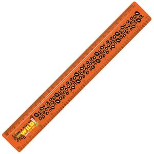 Plastic 30cm Ruler in Orange