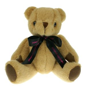 Branded Teddy Bear for Childrens Giveaways